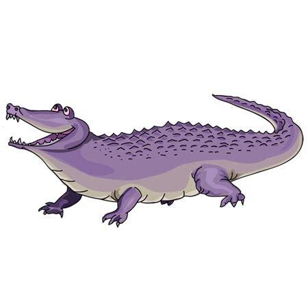 alligator clipart purple pencil and in color alligator