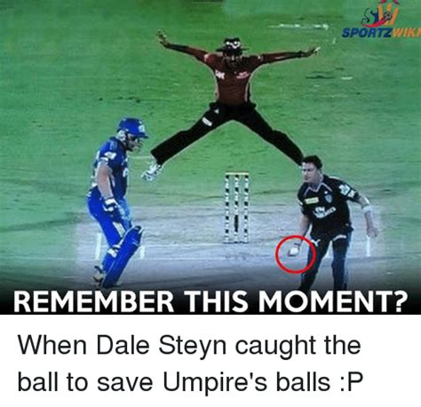 how to swing the ball like dale steyn 25 best memes about dale steyn dale steyn memes