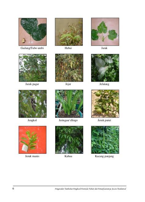 booklet pestisida nabati