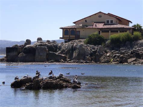 california turisti per caso monterey california stati uniti viaggi vacanze e