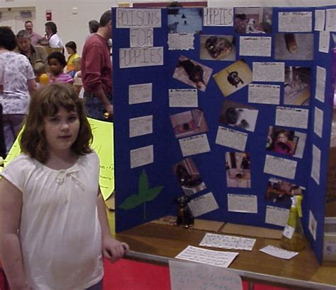 free 4th grade science projects science project ideas