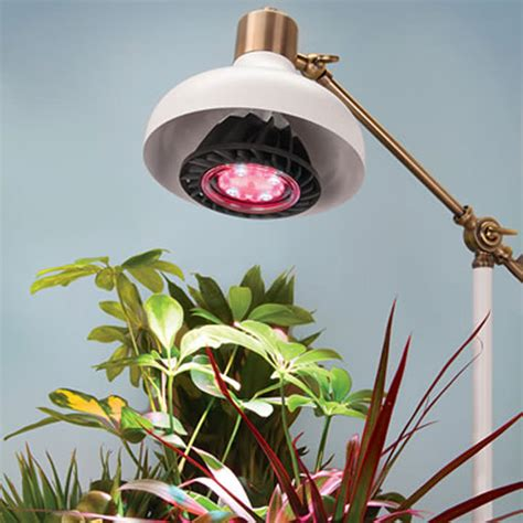 plant light led grow light for indoor plants wicked gadgetry