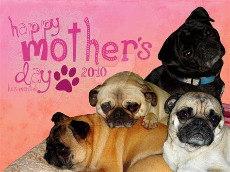happy pug day happy pugs mothers day by luis montiel on deviantart