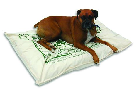 snooza pet futon snooza pet futon bm furnititure