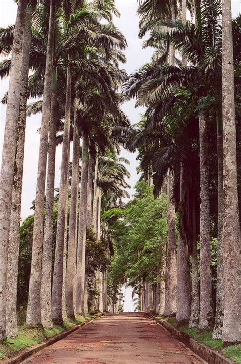 Aburi Botanical Gardens Aburi