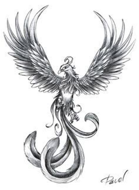 best 25 phoenix drawing ideas on pinterest tattoo