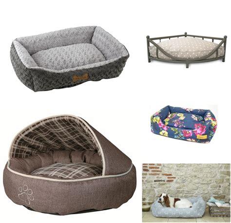 stylish dog beds 5 stylish dog beds for you new puppy