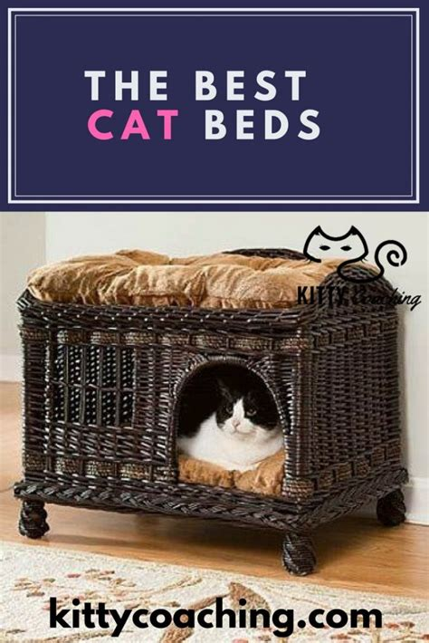 best cat bed the 5 best cat beds 2018
