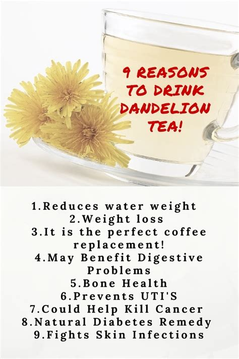 Dandelion Detox Tea Benefits by The Health Benefits Of Dandelion Tea Detox