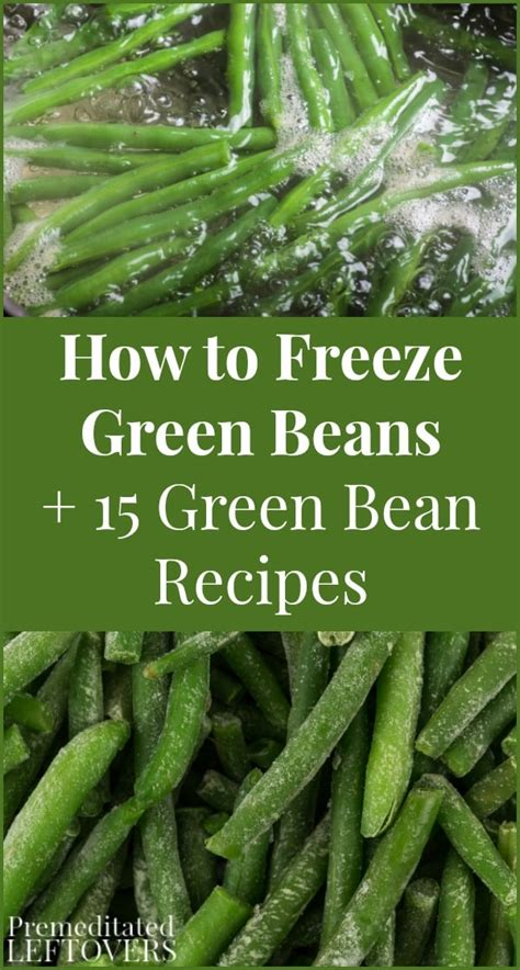 15 green bean recipes how to freeze green beans