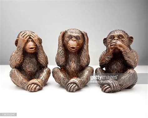 see no evil speak no evil hear no evil tattoo see no evil stock photos and pictures getty images