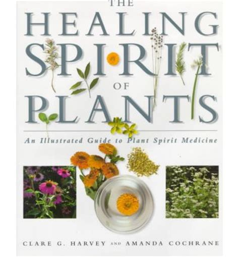 healing illustrated edition books the healing spirit of plants an illustrated guide to