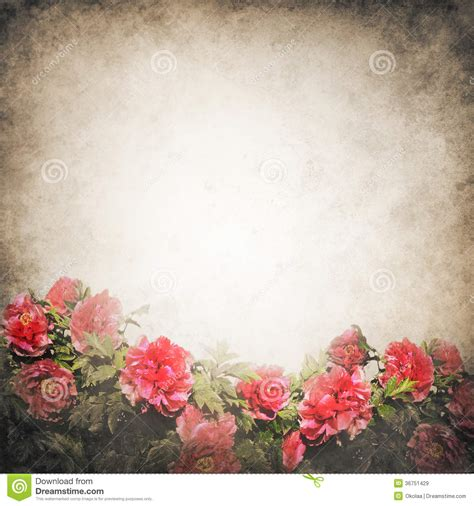 Grunge Background Template With Peony Flowers Stock Image Image Of Paper Copy 36751429 Beautiful Templates