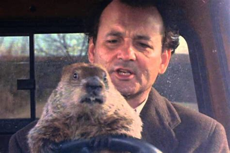 groundhog day actor bill murray is branching out into classical and