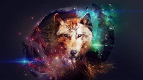 imagenes en 3d animales animal abstract fondos de pantalla hd fondos de