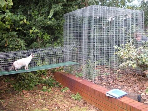 How Much Cost Fence Backyard Kitty Kingdom Cat Enclosure Products