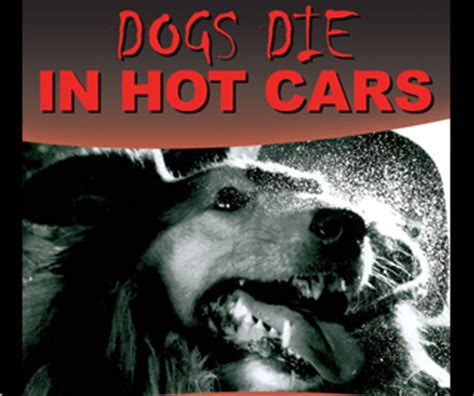 can dogs die from dogs can die in just six minutes southburnett au southburnett au