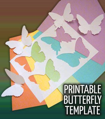 Paper Diy Place Card Holder Butterfly Template by Printable Butterfly Template To Print