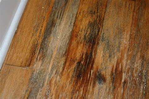 water stains on hardwood floors hardwood floor water damage certified restoration