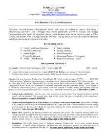 Best Resume Format Linkedin by Linkedin Url On Resume Example Vice President Sales