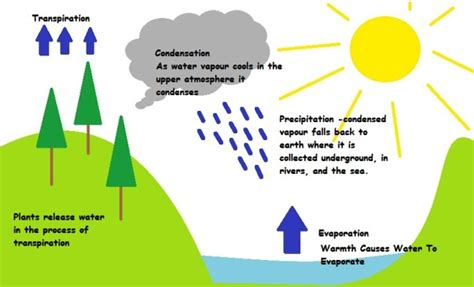 water cycle placemat science water cycle science experiments for preschoolers science for kids grades k 5 gov usagovwater