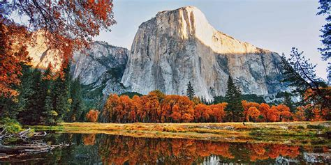 in california autumn leaves in california visit california