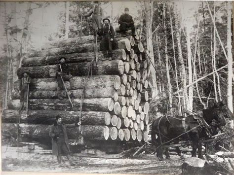 1800 Us Search Historical Photos American Logging