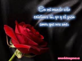 Imagenes de rosas con frases de amor rosa roja jpg