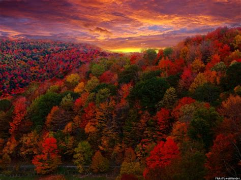 fall autumn these amazing autumn photos will make you excited summer s