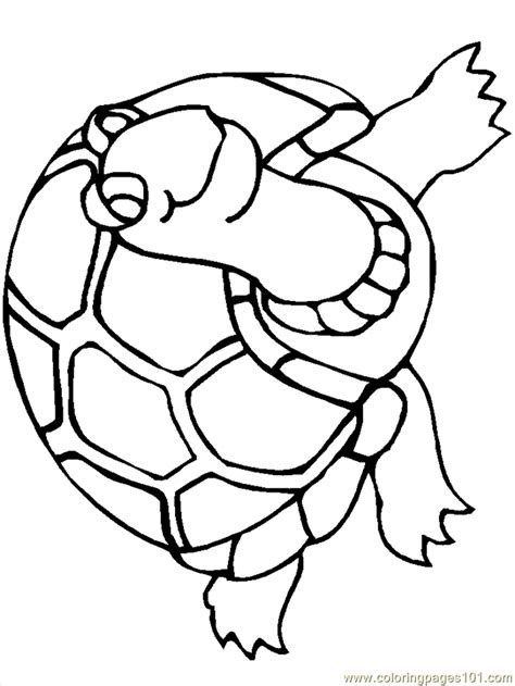 reptile coloring pages coloring home