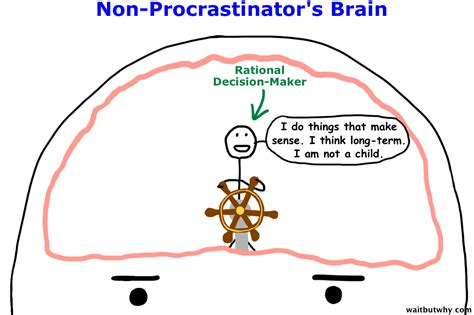 the better brain solution how to start now at any age to and prevent insulin resistance of the brain sharpen cognitive function and avoid memory loss books why procrastinators procrastinate wait but why