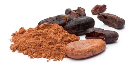 best cacao cacao is the best medicine for your nutritional