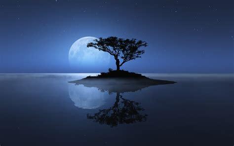 nature landscape night trees water moon stars sea
