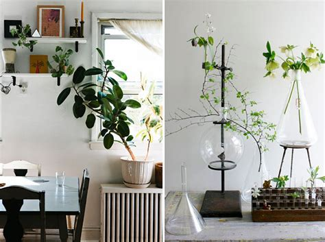 Indoor Plants For Interiors A 20 Unforgettable Indoor Plant Displays Ideas