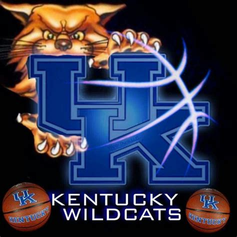 kentucky wildcats fan apparel 21 394 fans in the house at rupp arena tonight just a