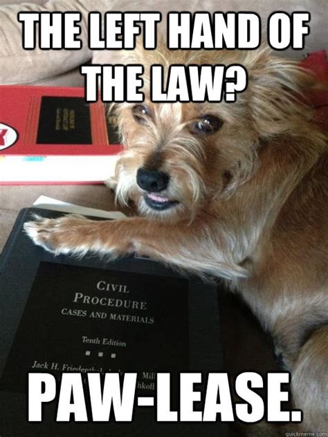 Law Dog Meme - the left hand of the law paw lease law dog quickmeme