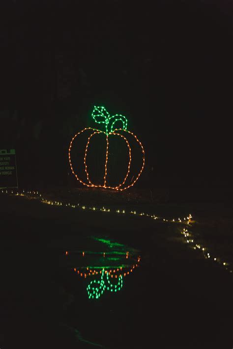 norfolk botanical gardens lights norfolk botanical garden lights dominion garden of