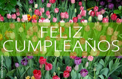 imagenes flores de cumpleaños flores de feliz cumple anos pictures to pin on pinterest