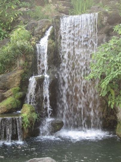 Los Angeles County Arboretum Botanic Gardens Arcadia Arcadia Botanical Gardens