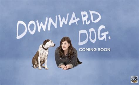 puppy tv show abc tv show quot downward quot featured adults auditions for 2018