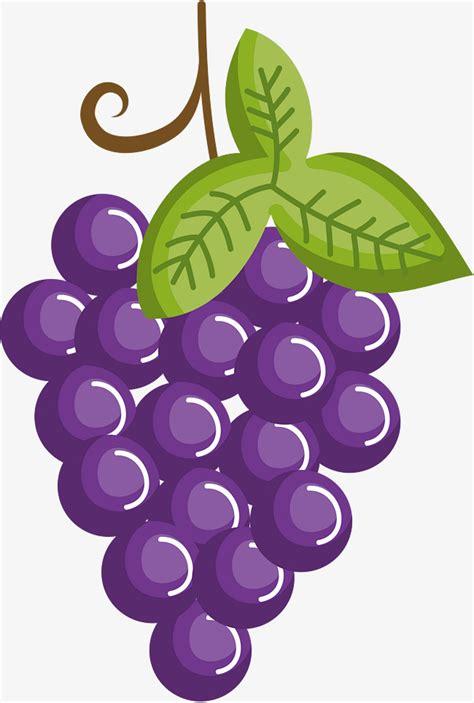 uva clipart purple uvas purple uva imagen png para