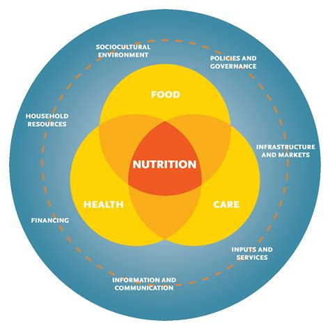nutrition diagram strengthening systems for nutrition