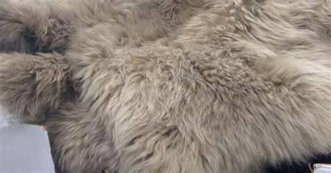 Costco Fur Rug by Sheepskin Rug Costco 134 99 Grey Beige Value Approx