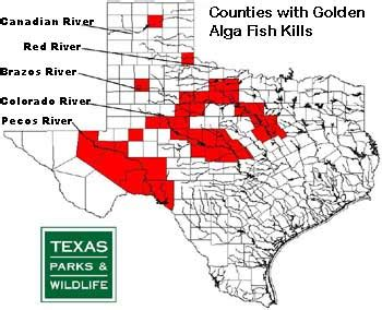 texas bodies of water map bodies of water of texas
