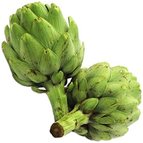 fuente de la alcachofa madridvillaycorte es cultivo de alcachofas de calidad factores humedad riegos