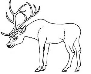 Antler Template by 45 Deer Templates Animal Templates Free Premium