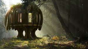 treehouse house the quiet treehouse by blue forest with quiet mark and