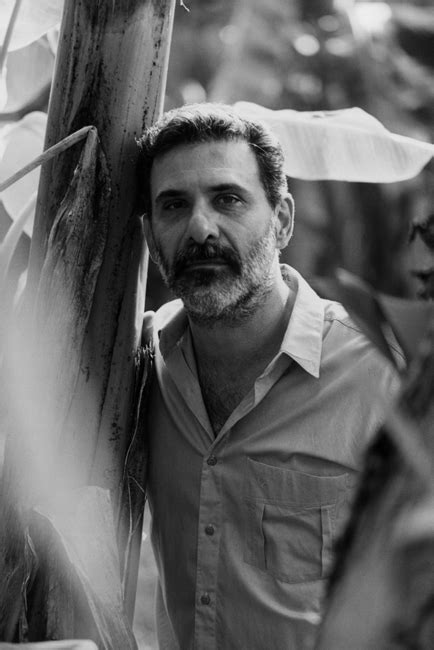 Domingos Pellegrini - Grupo Companhia das Letras