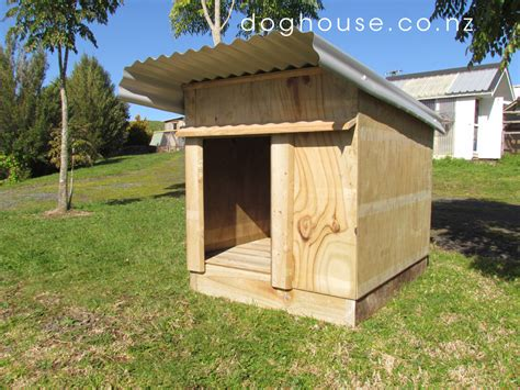 outside dogs house custom kennel breeds picture