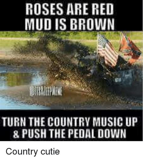 country music video mudding 25 best memes about country music country music memes
